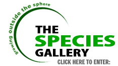 The Species Gallery